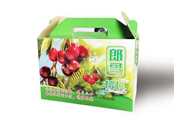 时令水果手提盒